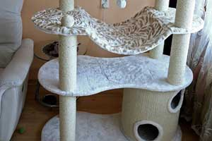 Cattery Scratch Tree - 10